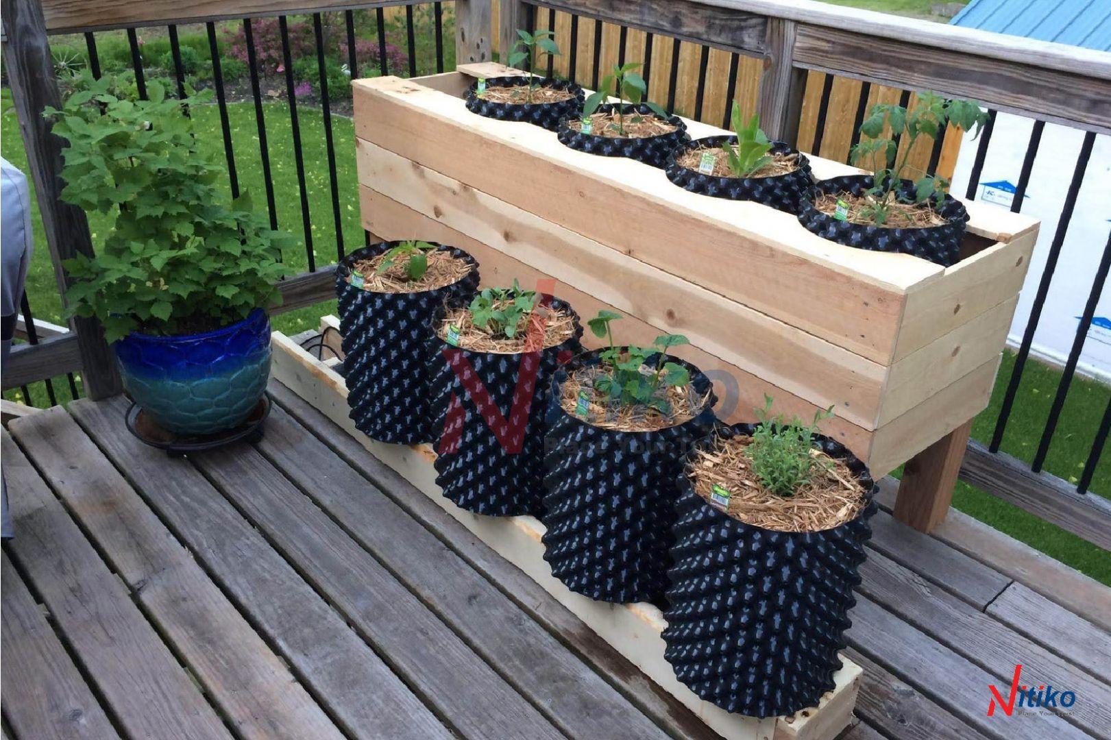 Bầu Ươm Rễ Cây Ecopot trồng cây ngoài ban công