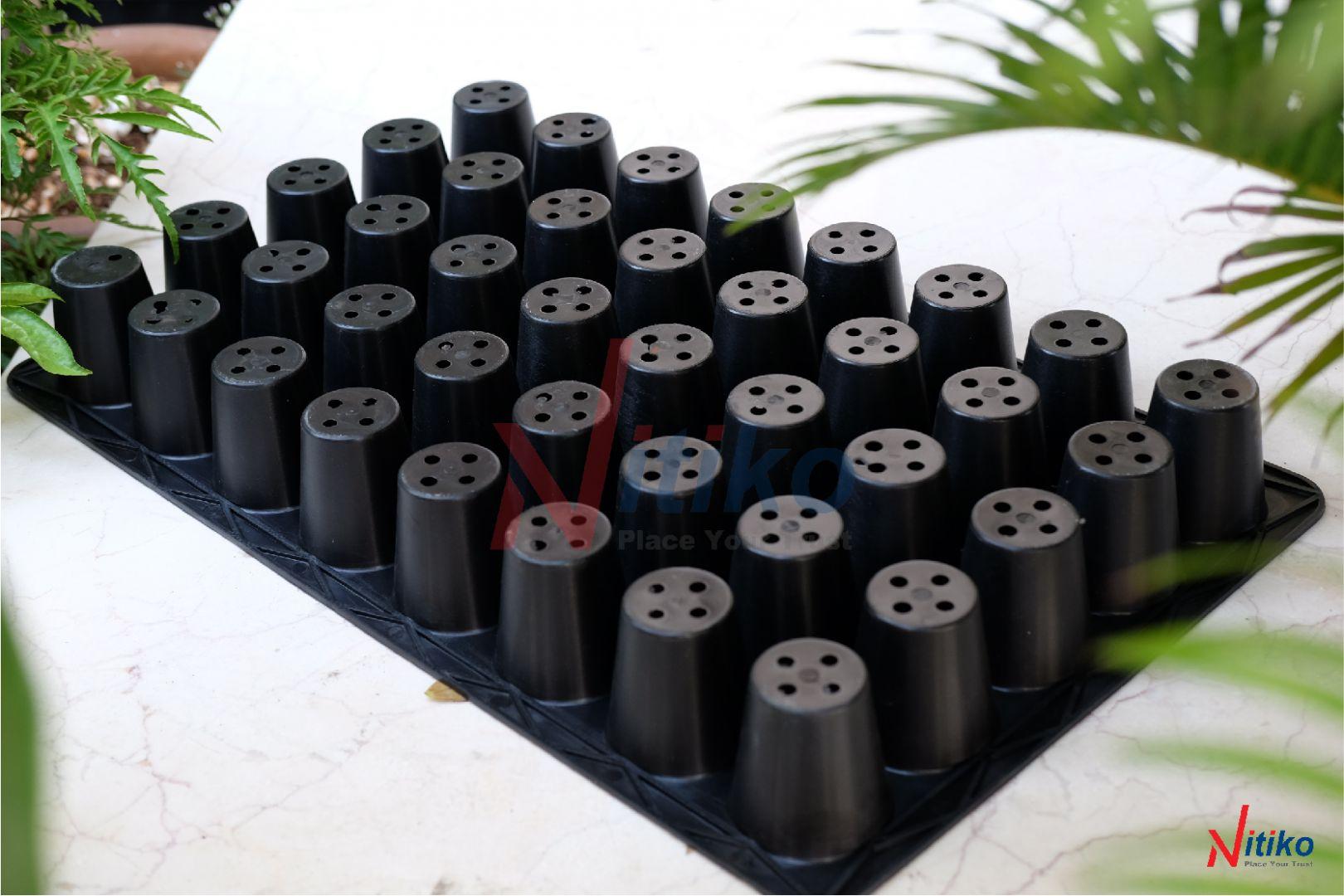 Khay ươm cây trồng 40 lỗ sản xuất tại Việt Nam