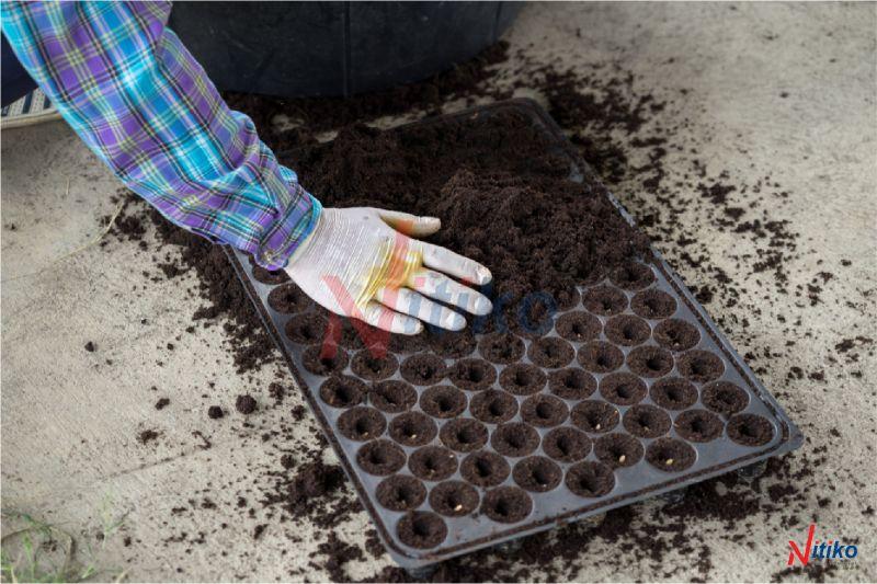 Khay dùng để ươm hạt giống và cây con